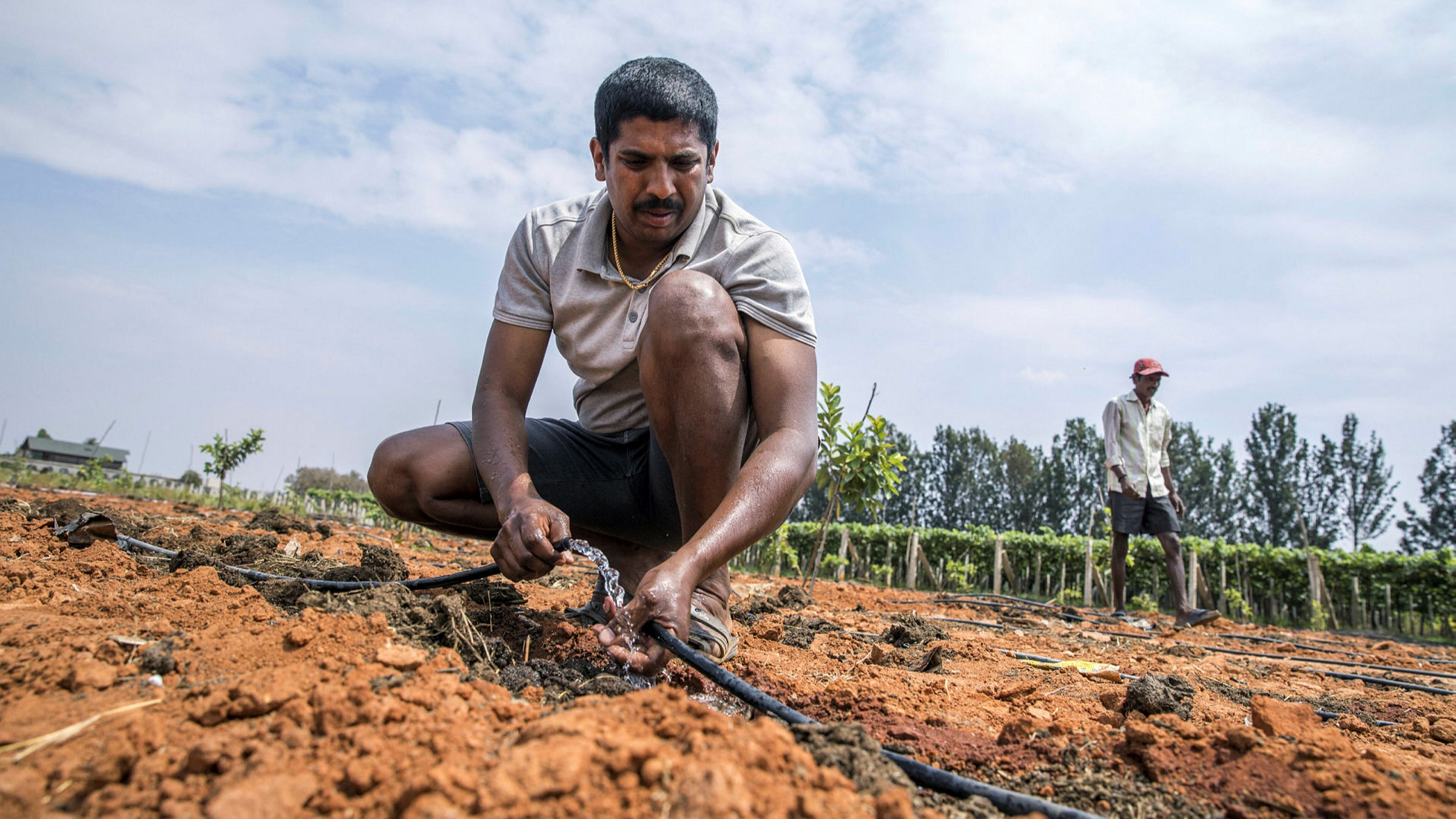Delayed monsoon jeopardises India's economic revival | Financial Times