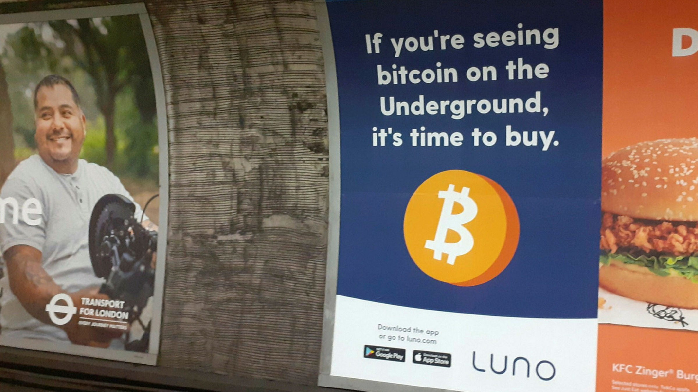 bus bitcoin rise)